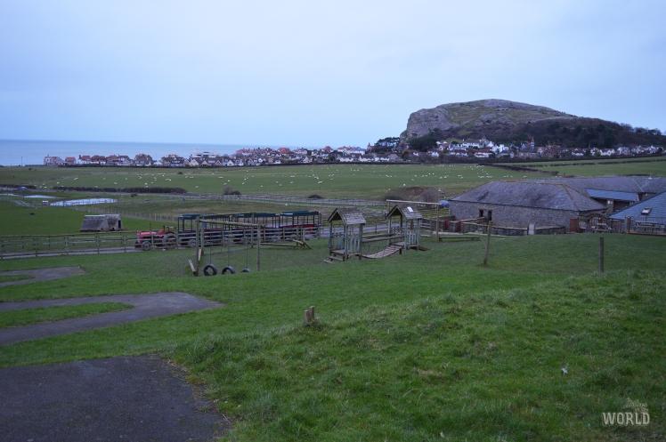 bodafon Farm park