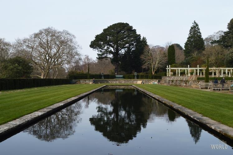 Bodnant Garden Reflection