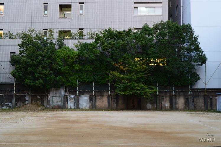 kyotoartcenter6