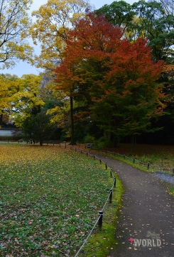 kyoto-imperial-palace-3