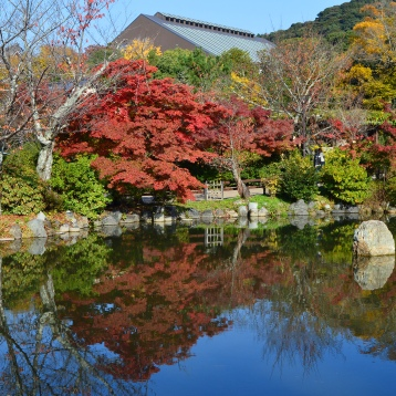 maruyama-park-2