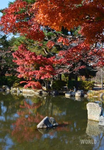 maruyama-park-3