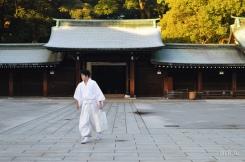 Geki solitario nel cortile del tempio