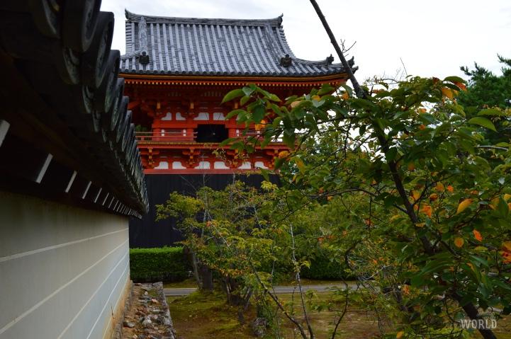 ninnaji-temple