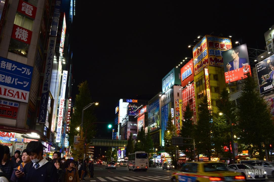 akihabara-night