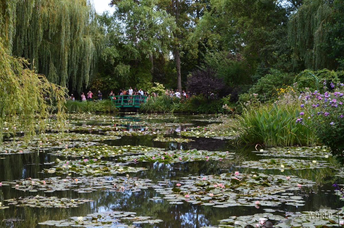 Tra le ninfee del giardino impressionista di Monet